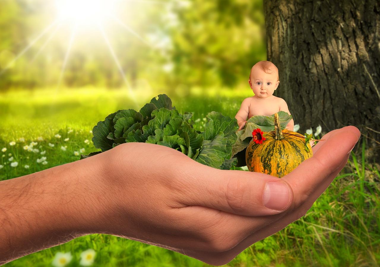 תכנית להבטחת בריאותם של ילדים